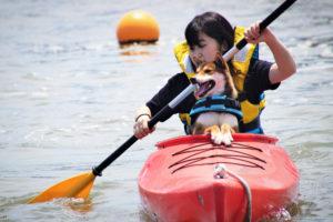 愛犬とカヌー体験